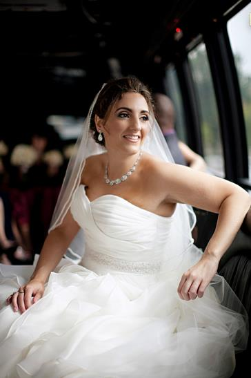 Gina's veil, earrings, & necklace