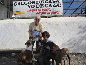 G.R.I.N. volunteers visit south of Spain shelters