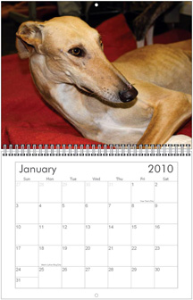 G.R.I.N. 2010 Wall and Desk Calendars!