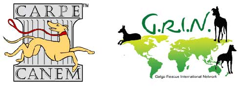 CArpe Canem Auction to benefit G.R.I.N.