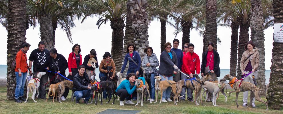 Torremolinos Beach Walk GEF