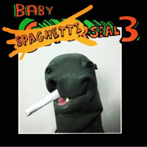 Baby Super Seal 3 - $35