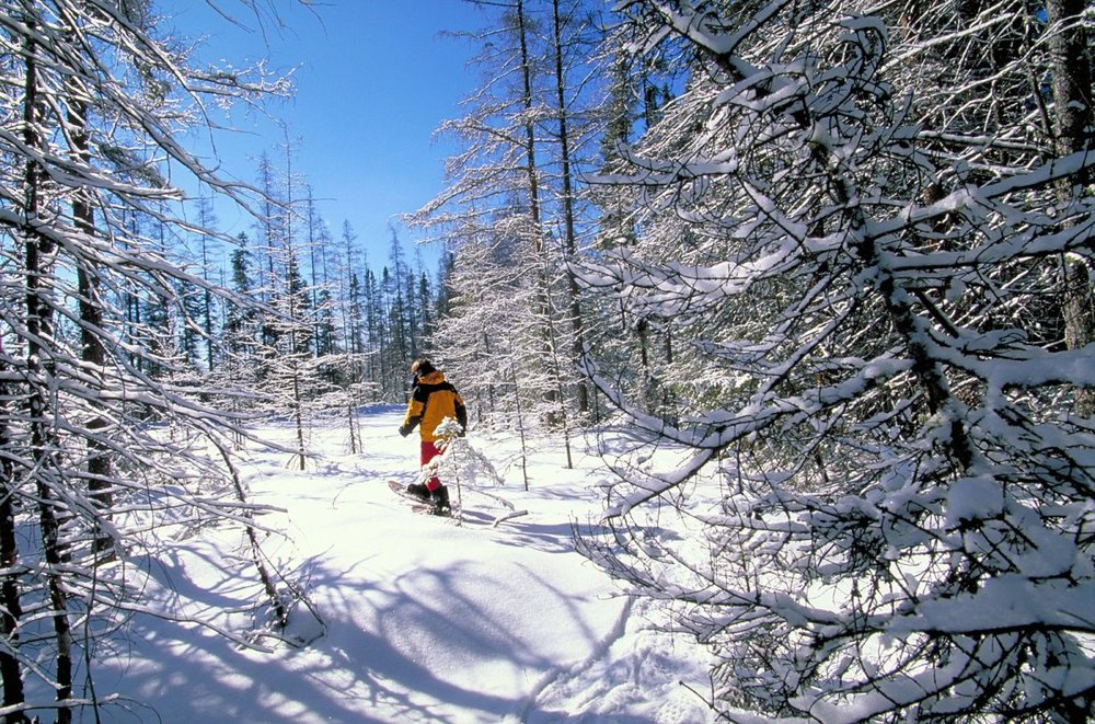 Snowshoe Trek