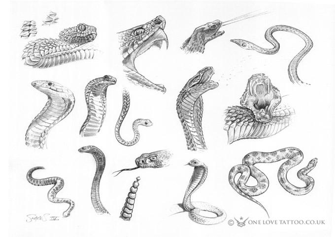 snakes-4.jpg