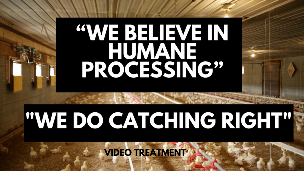 """""""We Believe in Humane Processing"""".png"""