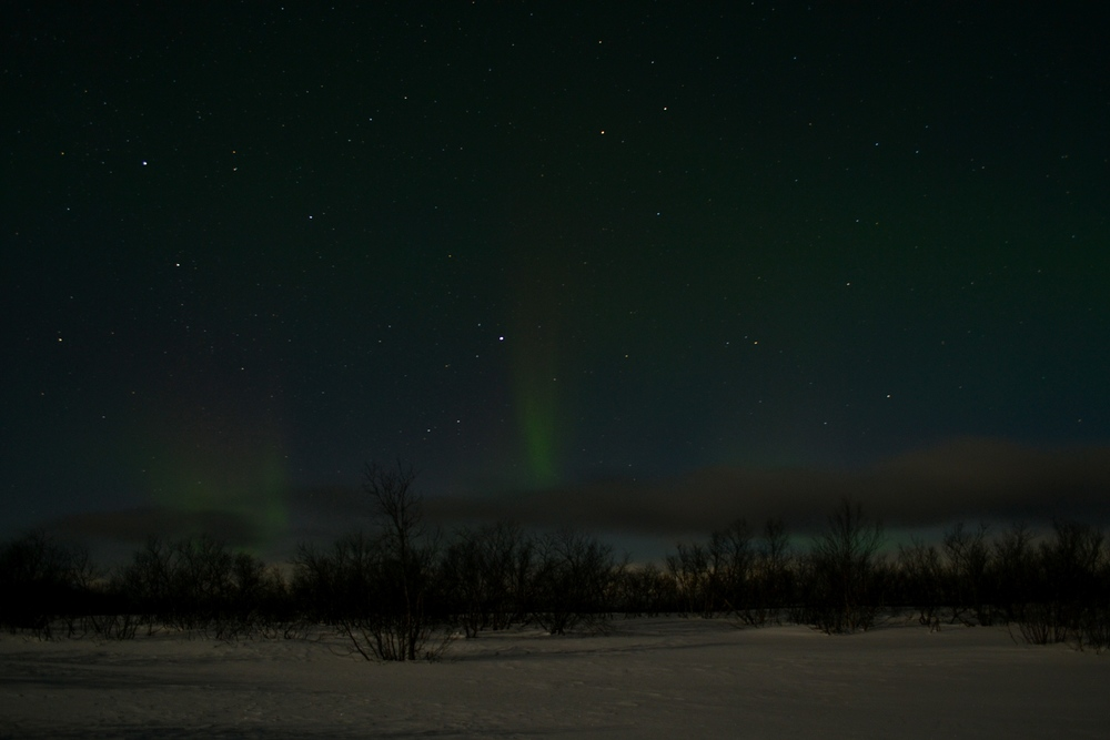 Our aurora surprise on the camera.