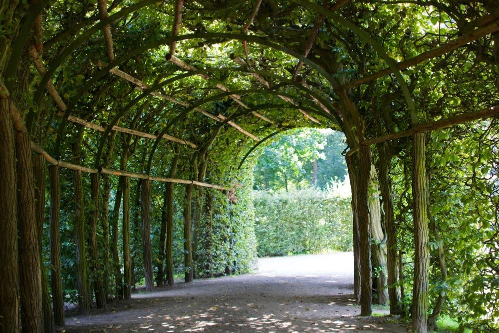 Park Sanssouci (Potsdam)