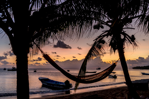 NIC LCI island getaway 201604 -09862.jpg