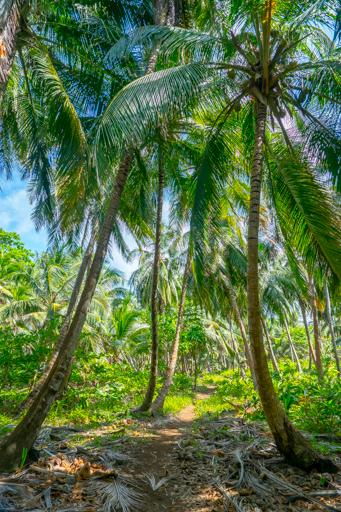 NIC LCI island getaway 201604 -09957.jpg