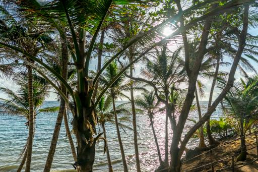 NIC LCI island getaway 201604 -09871.jpg