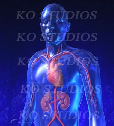 Blue glass 3D man with circulatory system