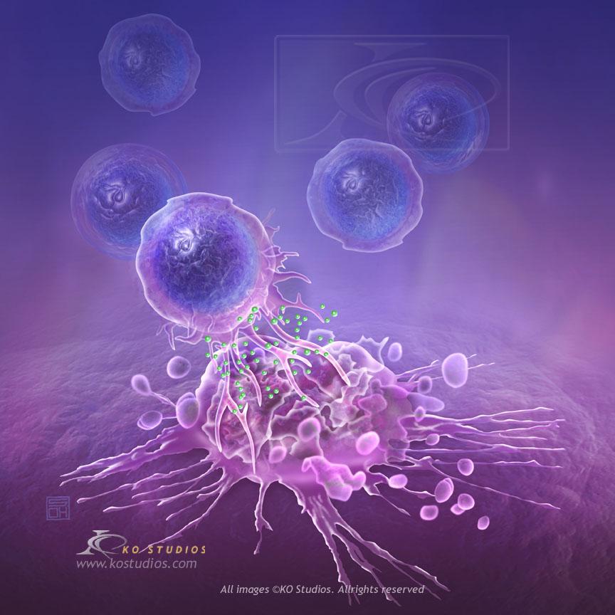 Cytotoxic T-Cells