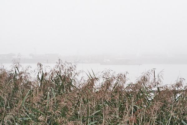 Thames-Fog_039_Web-L.jpg