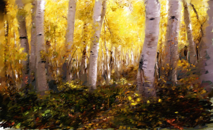 Aspen Gold - click here to go to my digital art work