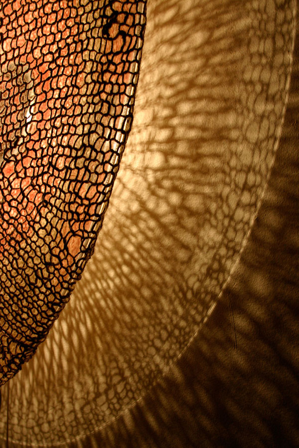 fishnet light