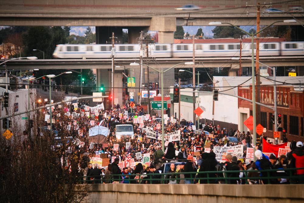 occupy-8496.jpg