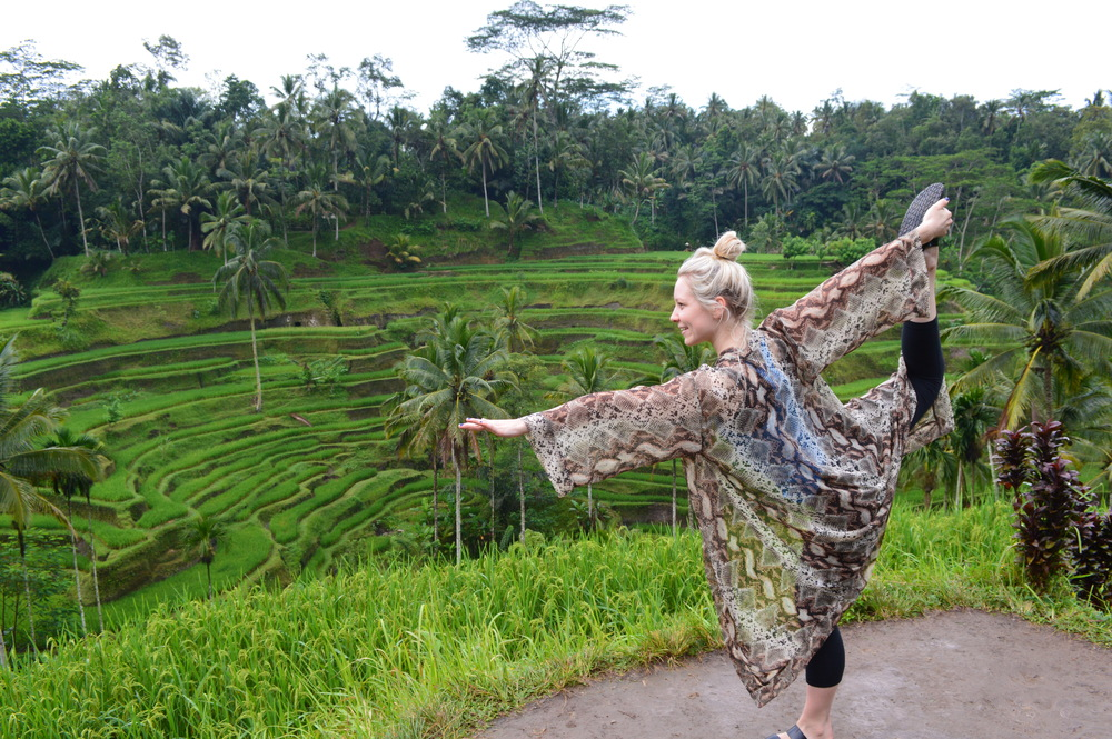 Rice paddies in Ubud.
