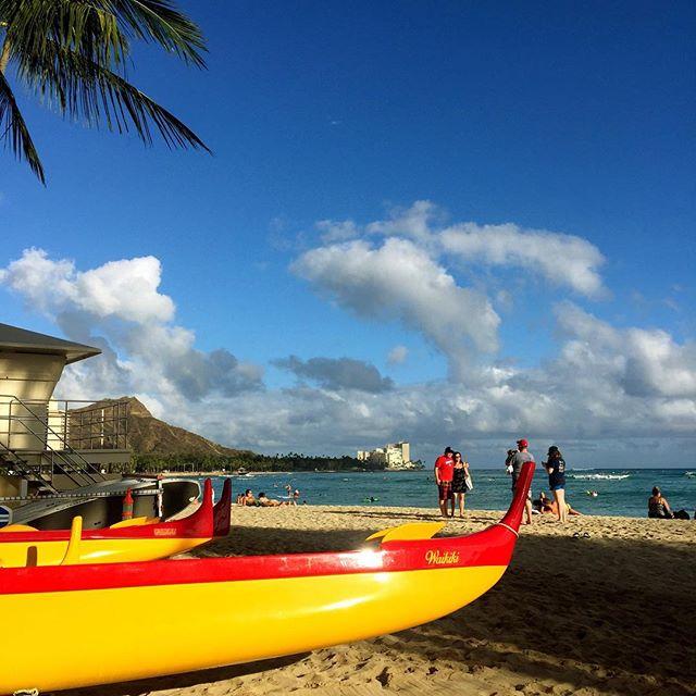 It's a beautiful day in Hawaii Nei!🌴😎
