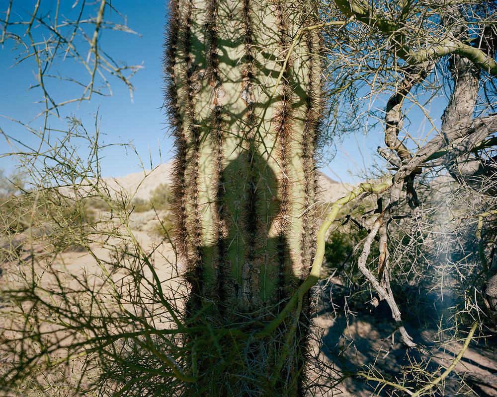 cactusme.jpg