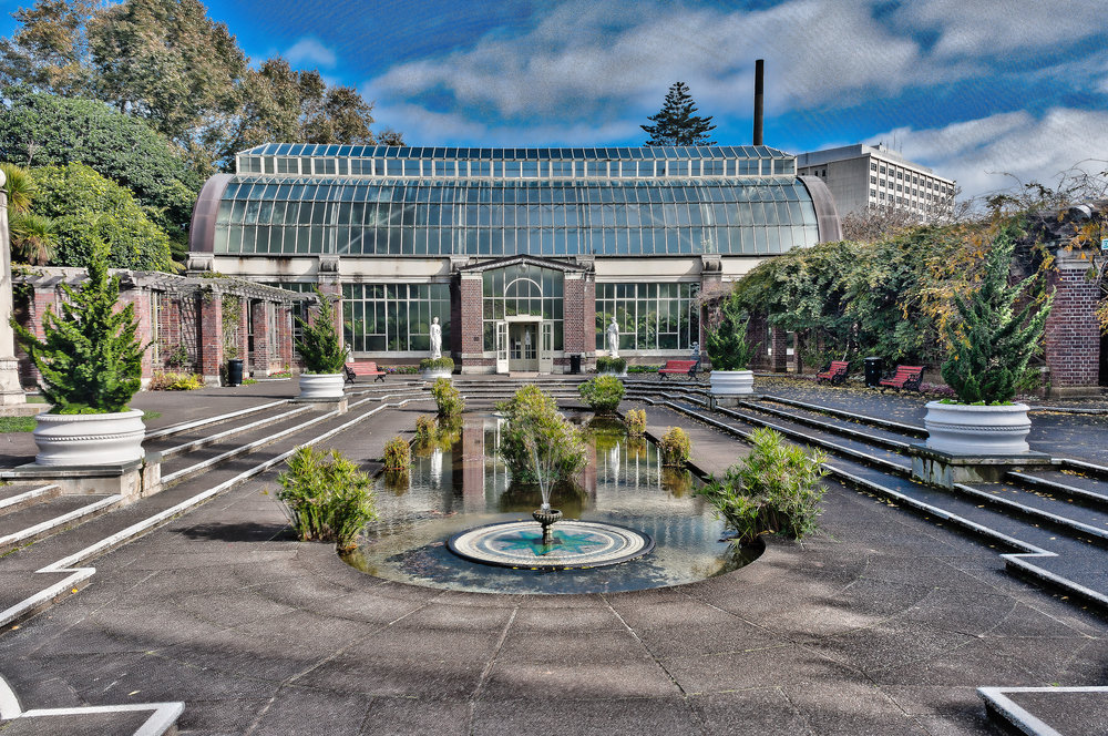 The Wintergardens - Auckland Domain -