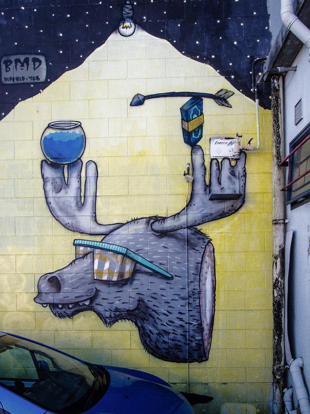 Nuffield Lane, Newmarket, Auckland - June 2017-5.jpg