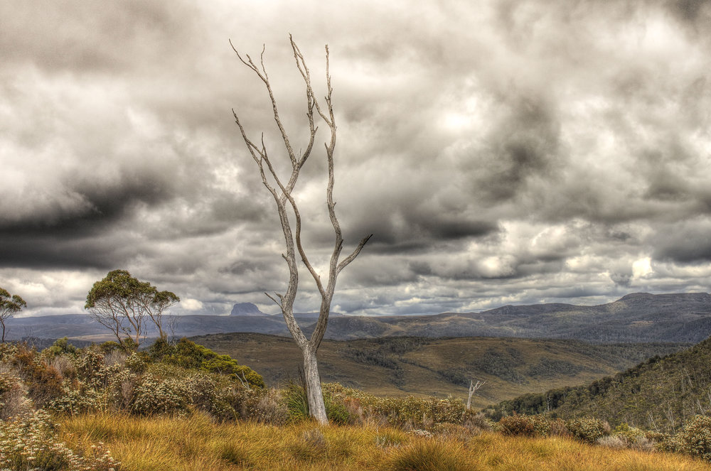 Cradle Mountain-1.jpg