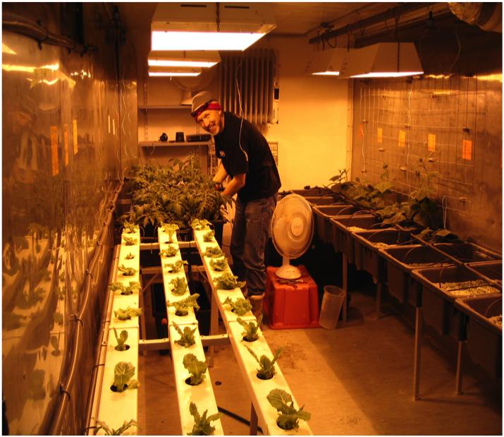 hydroponics.png