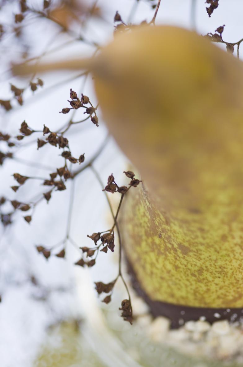 Herbstshooting_11-2014-150.jpg