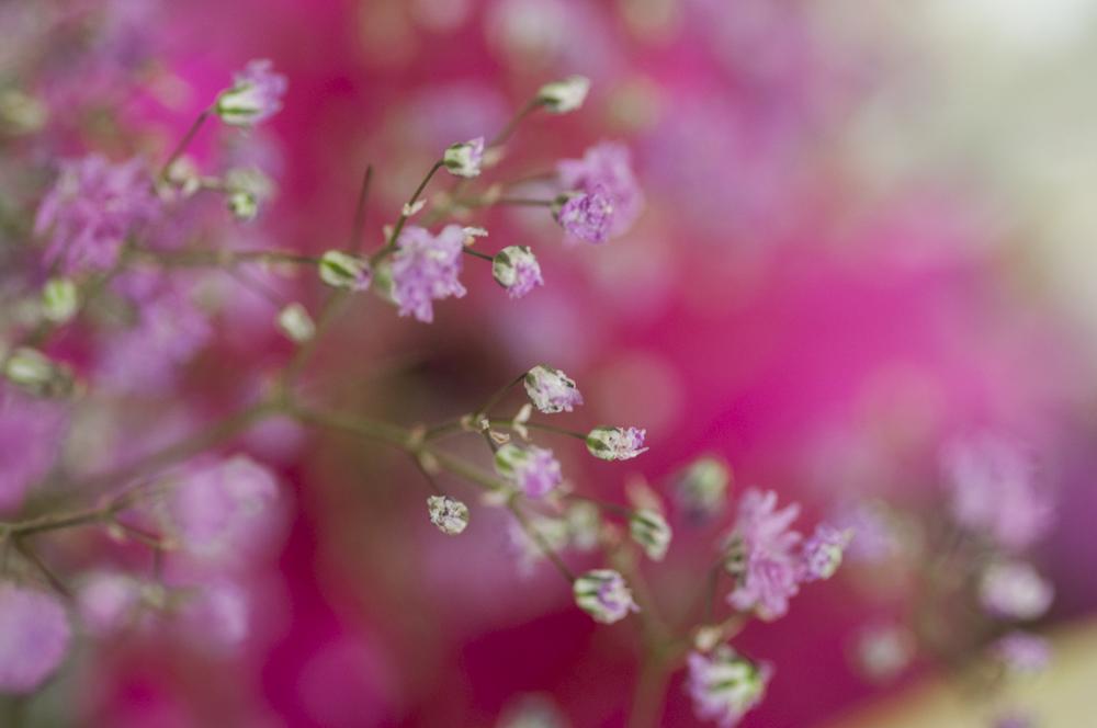 Hochzeitsblumen-54.jpg