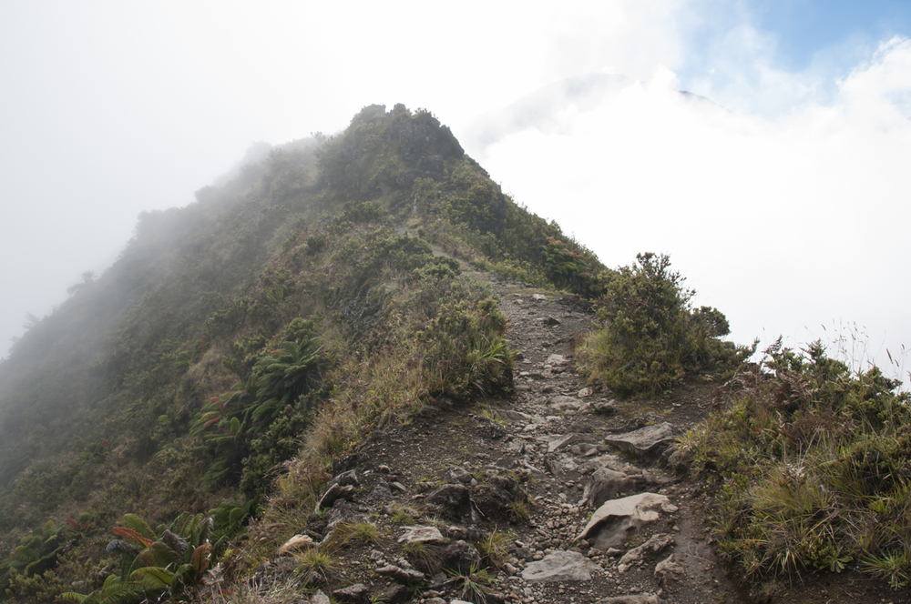 Maui 2015-261.jpg