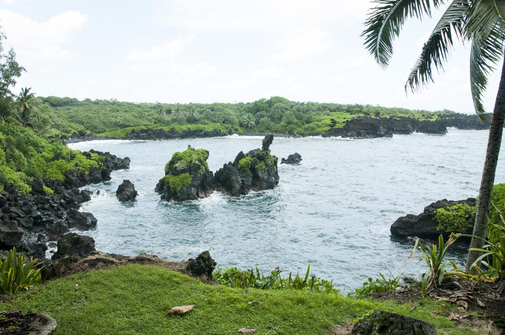 Maui 2015-139.jpg