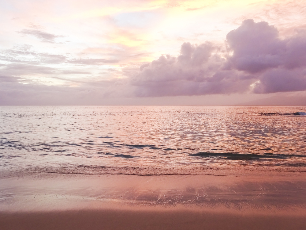 Maui 2015-79.jpg
