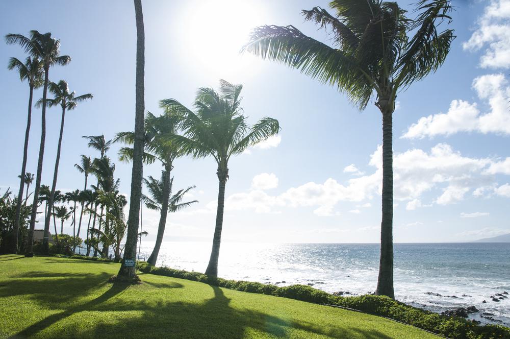 Maui 2015-11.jpg