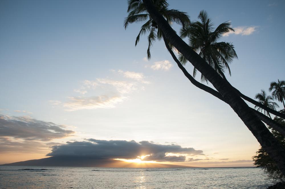 Maui 2015-67.jpg
