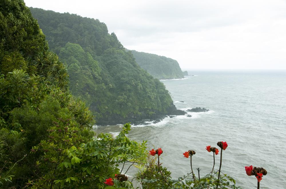 Maui 2015-132.jpg