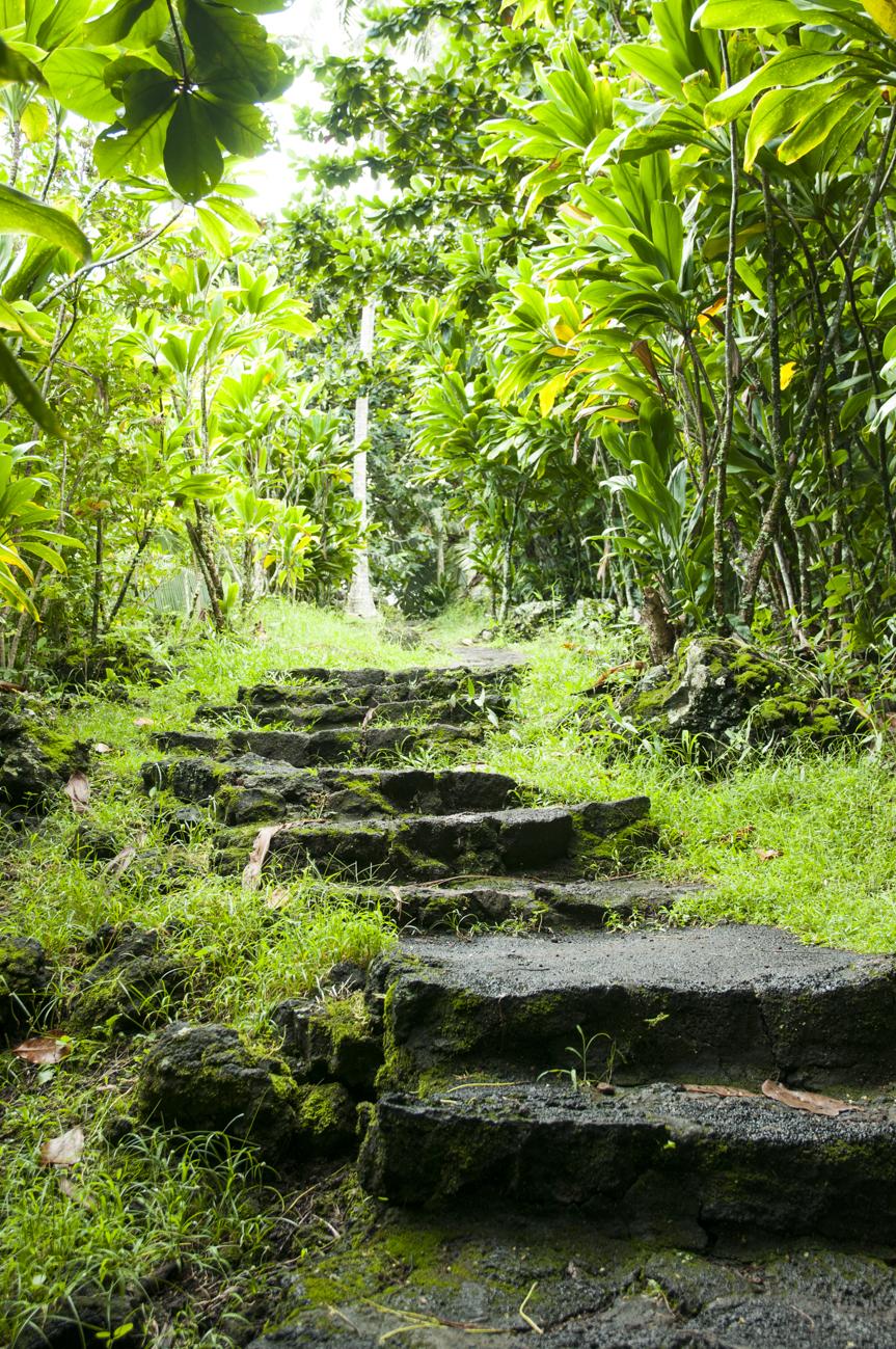 Maui 2015-146.jpg