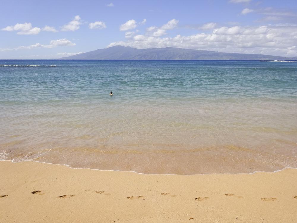Maui 2015-10.jpg