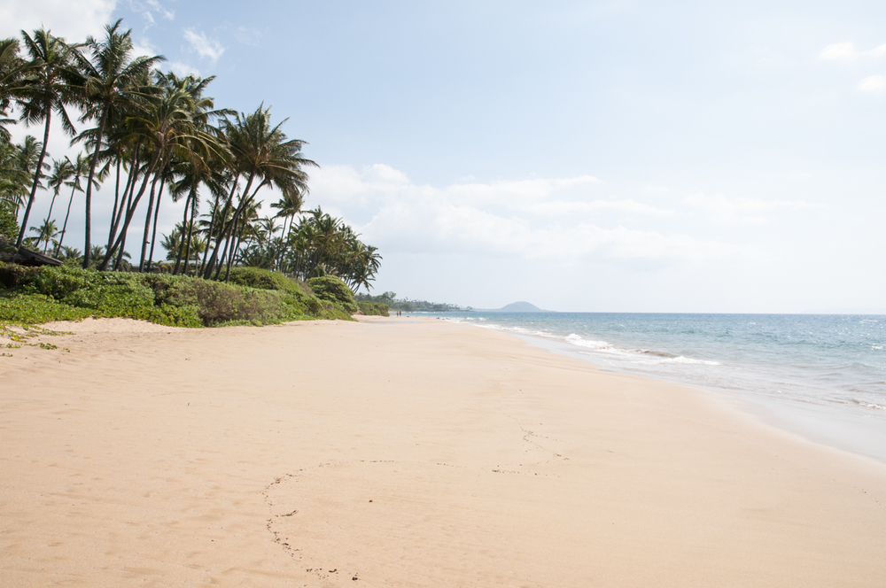 Maui 2015-207.jpg