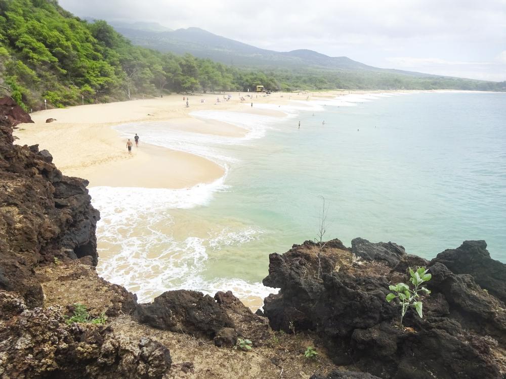 Maui 2015-221.jpg