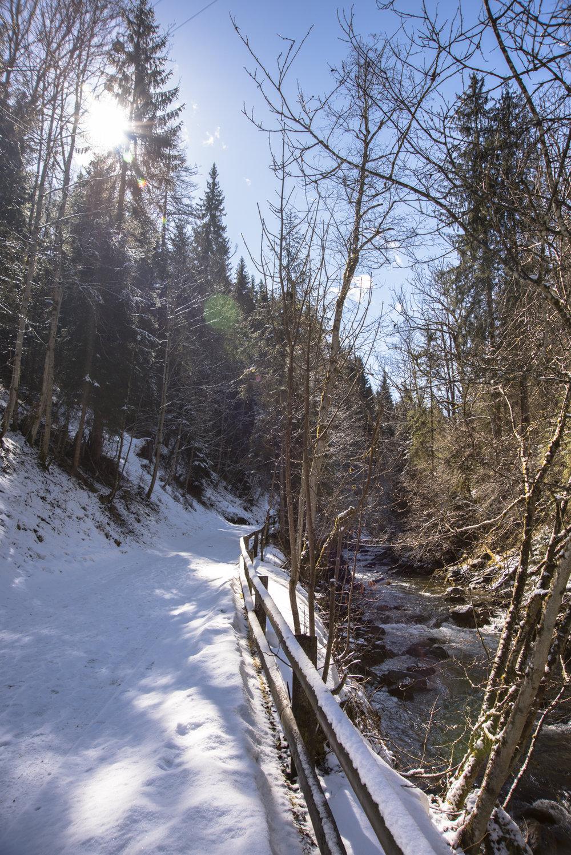 Schladming_03-2017-5.jpg