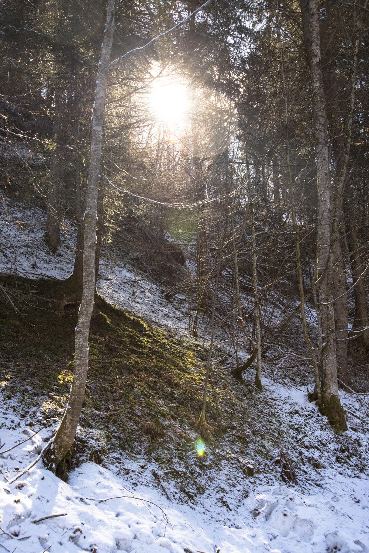 Schladming_03-2017-10.jpg
