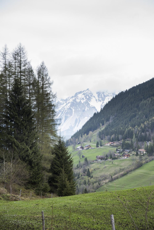Ostern-Natur_2017-50.jpg