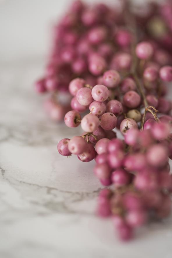 Cornelia Kahr Fotografie: Blumen