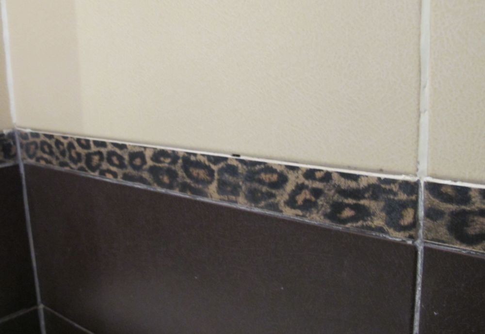 Leopard pattern accent tiles in one bathroom! Rawwrr….