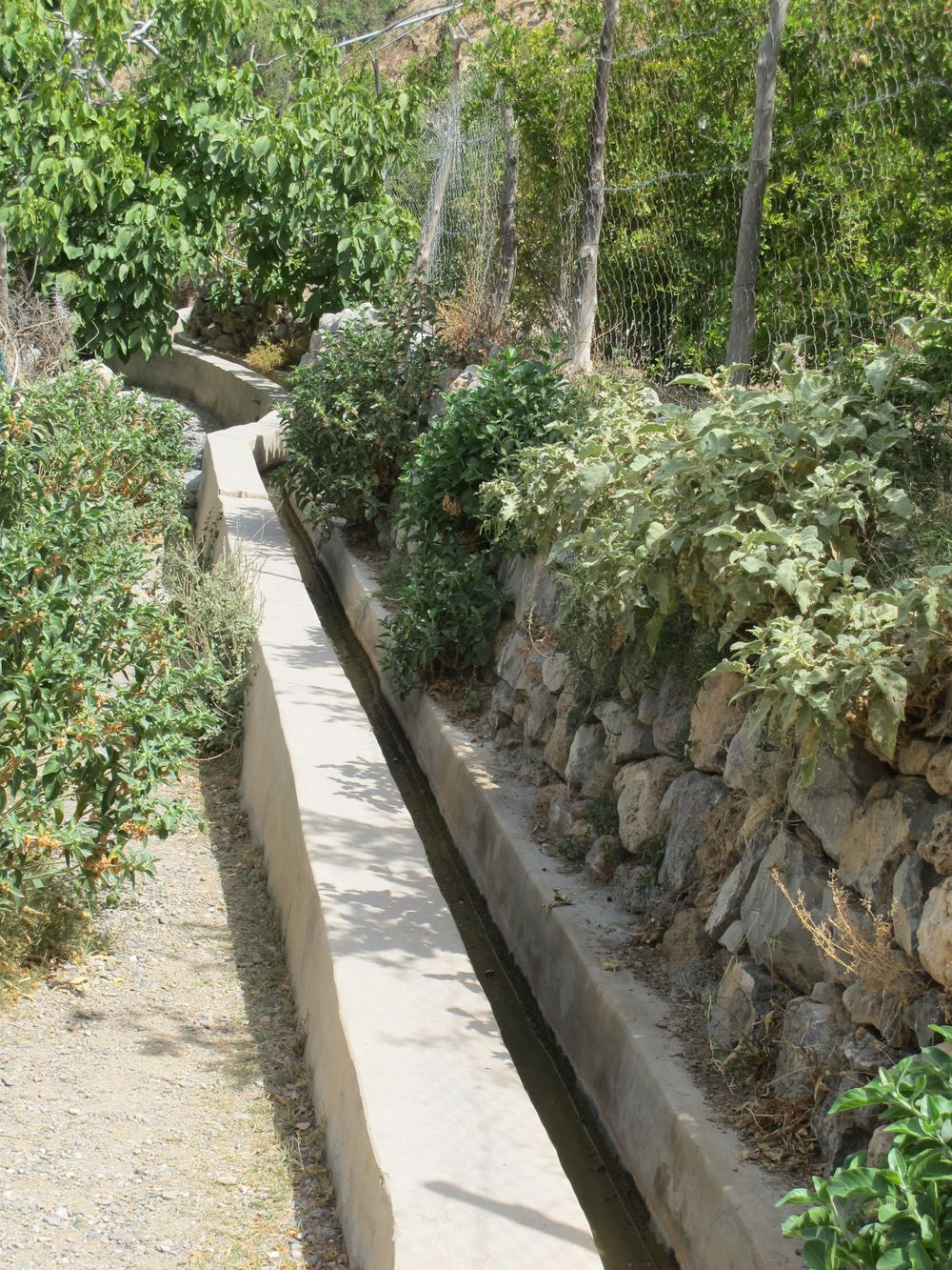 We saw aqueducts, wadis, and small shady pools in our treks around Jebel Akhdar.