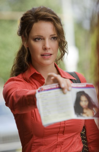 Katherine Heigl as Stephanie Plum