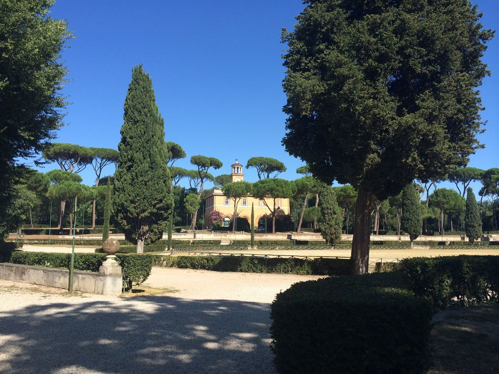 Borghese Gardens, complete with umbrella pines, which to me are oh, so Italian.