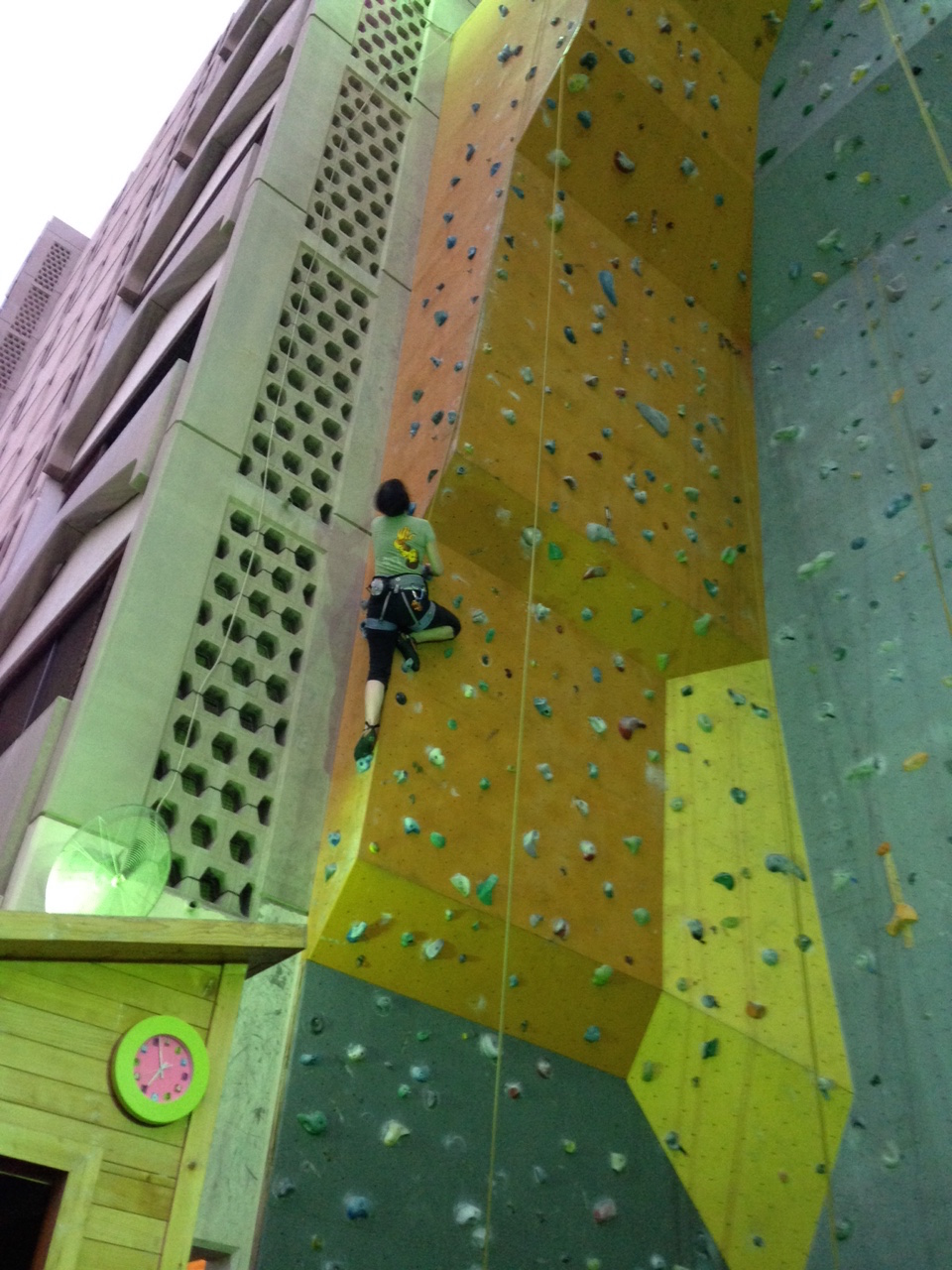 A climbing wall mounted on the outside of an apartment building. Crazy! It's the highest climbing wall I've ever seen, but I'm not aware of any world-record standing it may have.