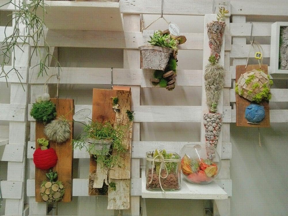 i nostri Quadri Viventi, ovvero riciclo creativo che ospitale piantine succulente.