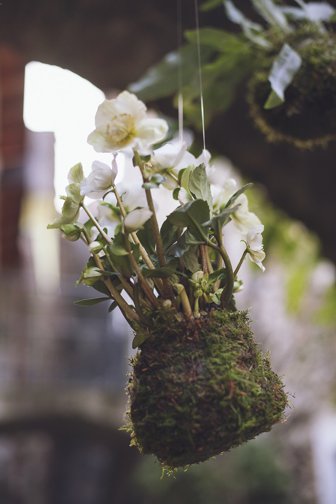 style-shooting-rocchettanervina-tizianagallofotografa-organico-botanico-4.jpg